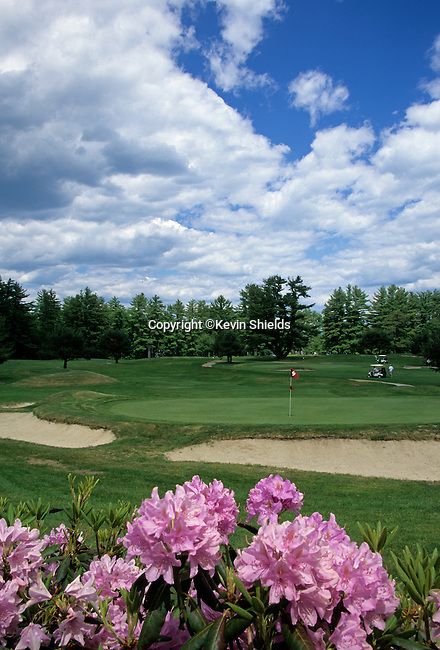 Golf course in Naples, Maine, USA