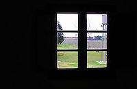 View through a window in the office over the garden, a park bench the vineyards and a water tower. Bodega Bouza Winery, Canelones, Montevideo, Uruguay, South America