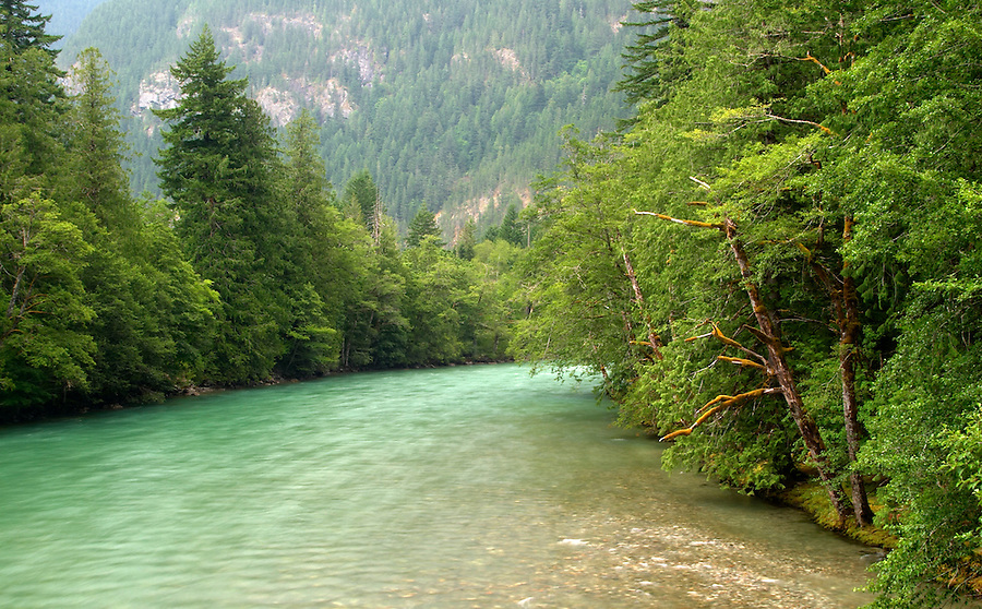 Skagit River, Newhalem, Ross Lake National Recreation Area, Whatcom County, Washington, USA
