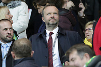 Manchester United Executive vice-chairman Ed Woodward during the Premier League match between Norwich City and Manchester United at Carrow Road on October 27th 2019 in Norwich, England. (Photo by Matt Bradshaw/phcimages.com)<br /> Foto PHC/Insidefoto <br /> ITALY ONLY