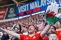 A Wales supporters cheers on during the UEFA EURO 2020 Qualifier match between Wales and Slovakia at the Cardiff City Stadium, Cardiff, Wales, UK. Sunday 24 March 2019