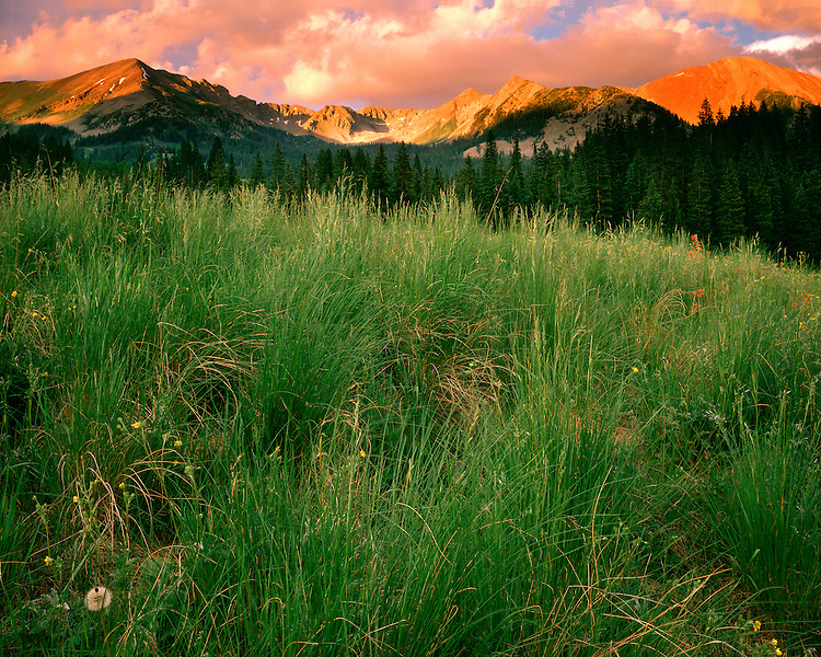 Sunset light and clearing storm clouds in Schofield Pass; Gunnison National Forest, CO