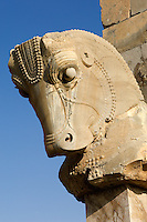 Some of the columns at the ancient city of Persepolis in Iran, built by the Persian emperor Darius I in the 5th century BC, are 21 metres high and on many of them the details of their capitals, as with this horse's head, are still intact.