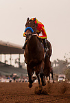 ARCADIA, CA - JANUARY 06: Mckinzie #6 with Mike Smith up wins the Sham Stakes at Santa Anita Park on January 06, 2018 in Arcadia, California. (Photo by Alex Evers/Eclipse Sportswire/Getty Images)