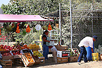 COUPLE SELL PRODUCE AT WEEKLY FLEA MARKET