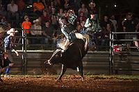 SEBRA - Danville, VA - 8.22.2014 - Bulls & Action