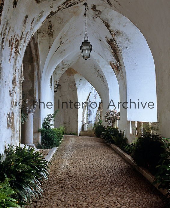 Plants line the vaulted walkway approach to the palace