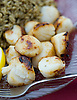 Local Digby scallops at the Fundy Restaurant in Digby, Nova Scotia. Photo by Kevin J. Miyazaki/Redux