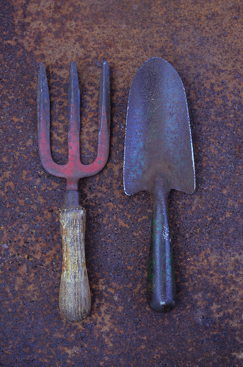 Well-used garden trowel and hand fork lying on rusty metal sheet
