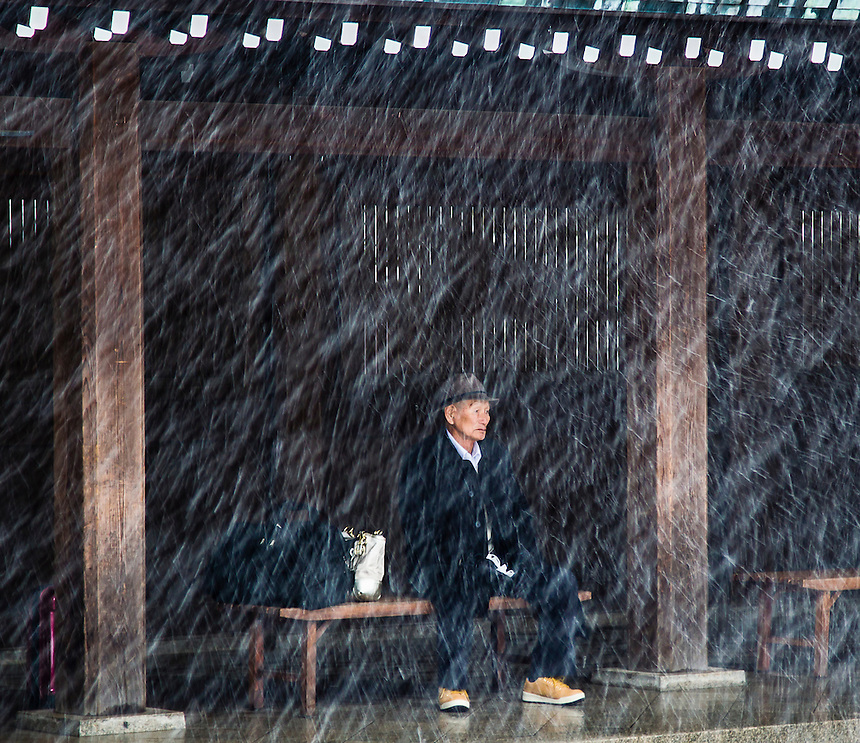 Old man sheltering in Meji Shrine from Tokyo`s heaviest snow in 46 years.