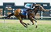 Unconditional Resq winning at Delaware Park on 7/26/12