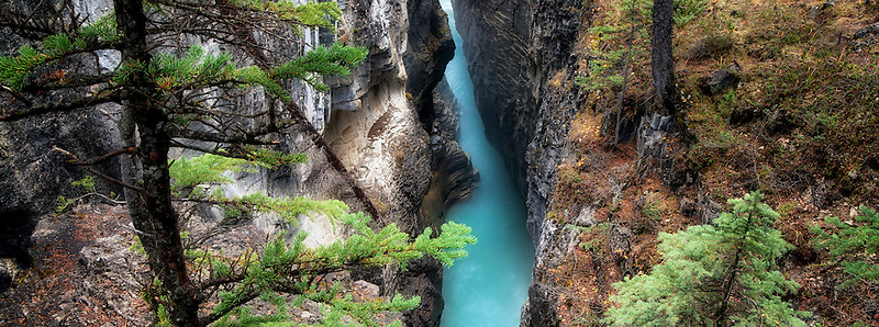 Canyon in Beauty Creek. Jasper National Park, Alberta, Canada