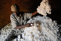 "Afrika Mali Helvetas Biobaumwolle Projekt - Speicher zur Lagerung der Baumwolle von Biofarmer Sibiri Koulibali 52 Jahre alt 1,5 ha cotton , von Kooperative Bougouni | .Western Africa Mali - organic cotton farming .| [ copyright (c) Joerg Boethling / agenda , Veroeffentlichung nur gegen Honorar und Belegexemplar an / publication only with royalties and copy to:  agenda PG   Rothestr. 66   Germany D-22765 Hamburg   ph. ++49 40 391 907 14   e-mail: boethling@agenda-fototext.de   www.agenda-fototext.de   Bank: Hamburger Sparkasse  BLZ 200 505 50  Kto. 1281 120 178   IBAN: DE96 2005 0550 1281 1201 78   BIC: ""HASPDEHH"" ,  WEITERE MOTIVE ZU DIESEM THEMA SIND VORHANDEN!! MORE PICTURES ON THIS SUBJECT AVAILABLE!!  ] [#0,26,121#]"