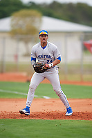 Central Connecticut State Blue Devils first baseman TT Bowens (24) during warmups before a game against the North Dakota State Bison on February 23, 2018 at North Charlotte Regional Park in Port Charlotte, Florida.  North Dakota State defeated Connecticut State 2-0.  (Mike Janes/Four Seam Images)