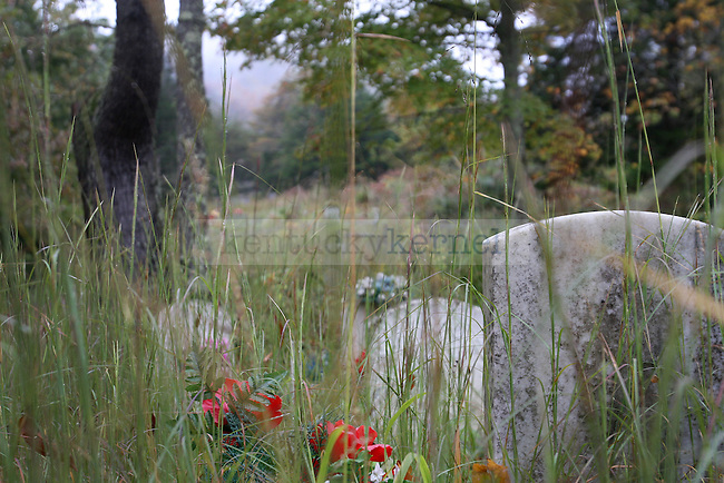 Old tombstones in the Grigsby cemetery in Quicksand, Ky.  (Oct. 13, 2011). Photo by Emily Cedargren
