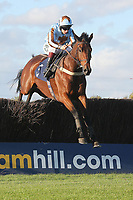 Vino Griego ridden by Jamie Moore jumps the last in the SWI Ltd Electrical Contractors Beginners Chase