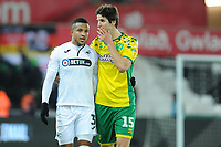 Martin Olsson of Swansea City speaks with Timm Klose of Norwich City during the Sky Bet Championship match between Swansea City and Norwich City at the Liberty Stadium, Swansea, Wales, UK. Saturday 24 November 2018