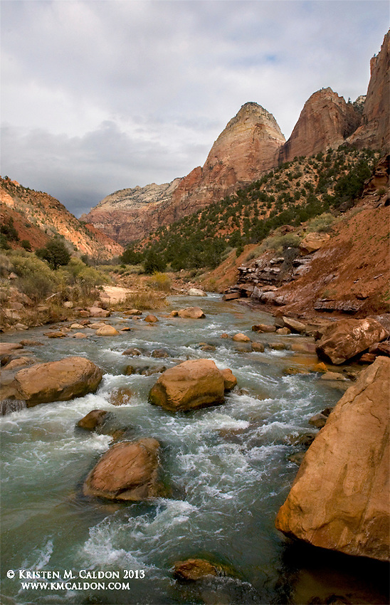 Canyon Junction. The North Fork of the Virgin river spills onto a much wider canyon than it previously knew upstream in Zion Canyon.