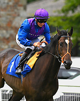 Blackfyre ridden by Tom Marquand goes down to the start   of The Sorvio Insurance Brokers Maiden Stakes (Plus 10)  during Afternoon Racing at Salisbury Racecourse on 12th June 2018