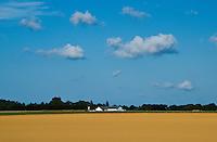 Sod Farm Harvest<br /> Riverhead, Long Island