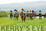 Racing action from the Tralee races on Saturday