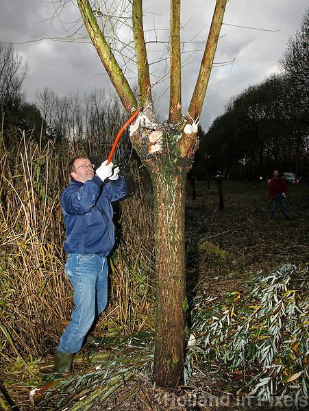 Landelijke  Natuurwerkdag. vrijwilligers  werken in de natuur. Man knot een wilg