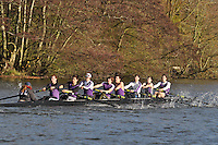 028 .ULO-Doyle .IM2.8+ .Univ of London BC. Wallingford Head of the River. Sunday 27 November 2011. 4250 metres upstream on the Thames from Moulsford railway bridge to Oxford Universitiy's Fleming Boathouse in Wallingford. Event run by Wallingford Rowing Club..