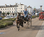 Horse and carriage ride along the seafront, Great Yarmouth, Norfolk, England