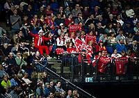 Roger Federer fans during the game against Jack Sock of USA<br /> <br /> Photographer Ashley Western/CameraSport<br /> <br /> International Tennis - Barclays ATP World Tour Finals - O2 Arena - London - Day 1 - Sunday 12th November 2017<br /> <br /> World Copyright &not;&copy; 2017 CameraSport. All rights reserved. 43 Linden Ave. Countesthorpe. Leicester. England. LE8 5PG - Tel: +44 (0) 116 277 4147 - admin@camerasport.com - www.camerasport.com