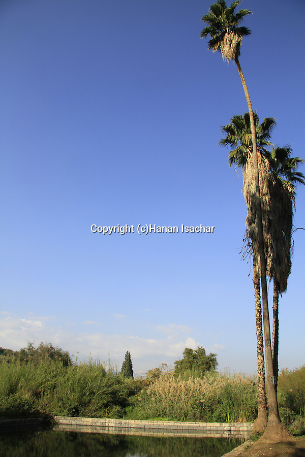 Israel, Ein Noon by the Sea of Galilee