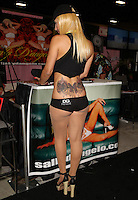 Erica [Dean's Gold Gentlemen's Club] at Exxxotica, Broward County Convention Center, Fort Lauderdale, FL, Sunday May 4, 2014.