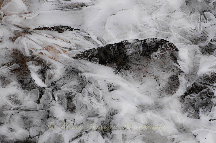 &quot;RIVER ICE-1&quot;<br />