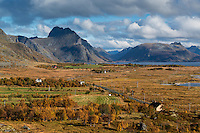 Autumn view of Vikjorden and surrounding mountains, Vestvågøy, Lofoten Islands, Norway