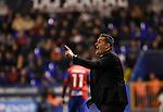 Granada CF's coach Jose Ramon Sandoval during La Liga match. December 12, 2015. (ALTERPHOTOS/Javier Comos)