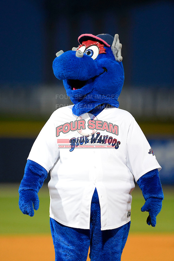 Pensacola Blue Wahoos mascot during a game against the Jacksonville Suns on April 15, 2013 at Pensacola Bayfront Stadium in Pensacola, Florida.  Jacksonville defeated Pensacola 1-0 in 11 innings.  (Mike Janes/Four Seam Images)