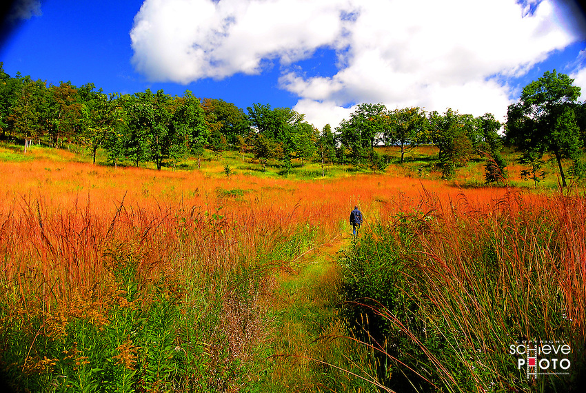 A pleasant early fall day at the Pleasant Valley Conservancy near Black Earth, Wisconsin.