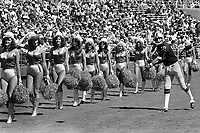 Oakland Raider Ken Stabler warms up on the sideline before game against the San Diego. Charger cheerleaders are no distraction to Stabler. (1976 photo/Ron Riesterer)