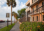 From a recent walk around Charleston SC. This one from the Charleston Battery, in front of the Battery Row Mansions.