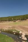 Israel, Wadi Zippori in the Lower Galilee