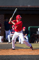 Weston Clarke (21) of the Belmont Abbey Crusaders at bat against the Shippensburg Raiders at Abbey Yard on February 8, 2015 in Belmont, North Carolina.  The Raiders defeated the Crusaders 14-0.  (Brian Westerholt/Four Seam Images)