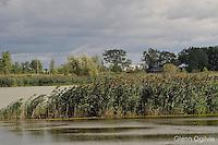 Wawanosh Wetlands and Suncor Natureway