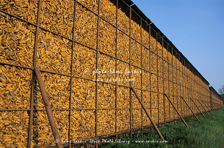 Cages of drying corn on a farm in Isère, France.
