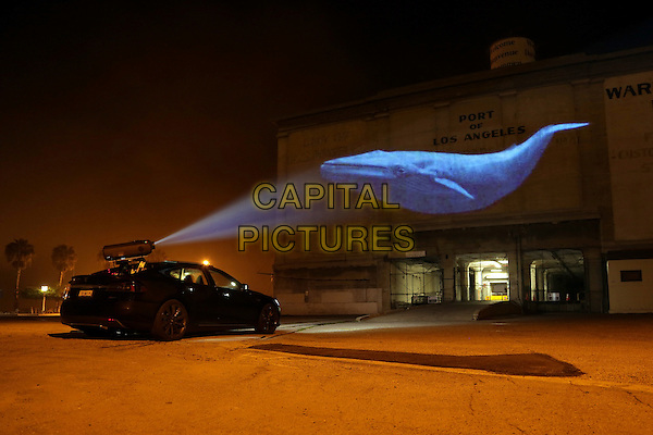 SCENE<br /> in Racing Extinction (2015) <br /> *Filmstill - Editorial Use Only*<br /> CAP/NFS<br /> Image supplied by Capital Pictures
