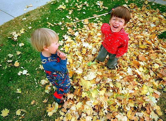 Noah Nelson and Ed Zambrano playing in a pile of leaves.<br />