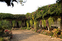 Beautiful courtyard at sunset with flowers at La Posada de Don Rodrigo restaurant in Antigua Guatemal
