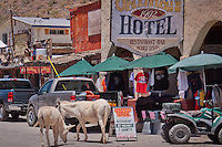 Wild Burros roam the streats in the Ghost Town of Oatman Ariazona.  The historic Oatman Hotel built in 1902 has housed many famous including Clark Gable and Carol Lombard who honeymooned there in 1939.