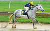 Singanothersong winning at Delaware Park on 7/6/17