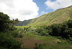 Hawaii: Molokai, scenic view of Halawa Valley, with hike in past taro fields, ancient walls, to waterfalls, guided by Lawrence Aki..Photo himolo216-72006.Photo copyright Lee Foster, www.fostertravel.com, lee@fostertravel.com, 510-549-2202