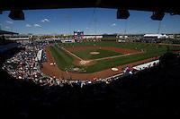 Stadiums MLB Stock