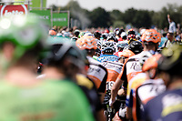 Start in Breda! And off they go...<br /> <br /> Binckbank Tour 2017 (UCI World Tour)<br /> Stage 1: Breda (NL) &gt; Venray (NL) 169,8km